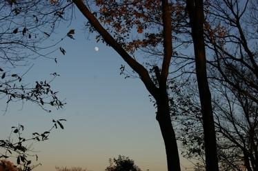 131214_moon.jpg